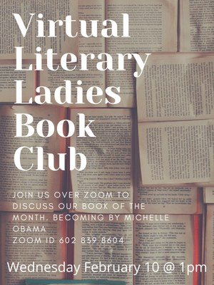 Virtual Literary Ladies Book Club